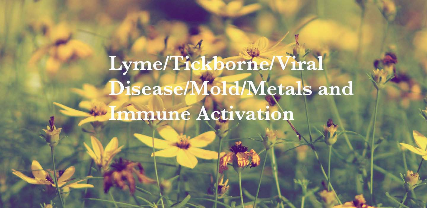 Lyme/Tickborne/Viral Disease/Mold/Metals and Immune Activation | IHP | Integrative Health Practices
